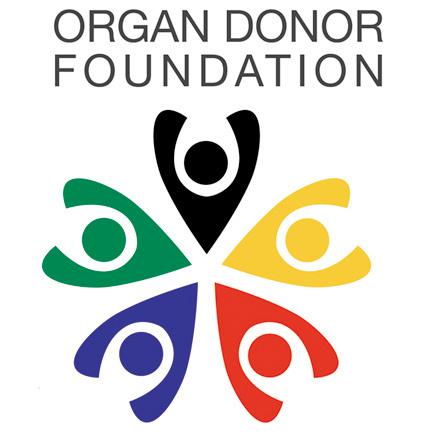 Organspende / Transplantation 33_organe_4