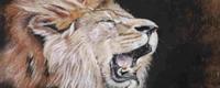 (Ashcal, lion géant de Baldwin +150, 50, v+100)