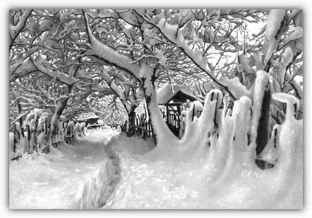 Снег, согревающий душу (Доленджашвили Г.) C861f6450e79