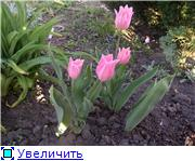 Весна идет, весне дорогу! - Страница 8 55ba02efd3bct
