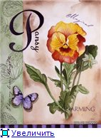 Цветы, букеты B0a2750fbeb1t