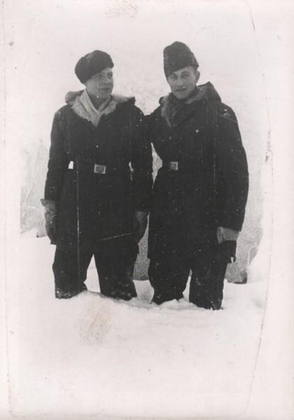 """6 дивизия СС """"Норд"""" 1551083_600"""