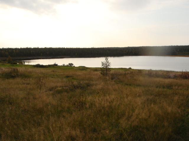 Карелия,край лесов и озёр DSC02544
