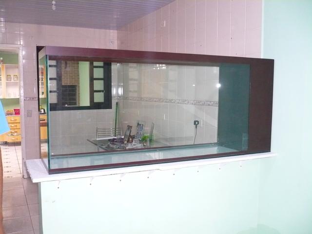 Meu novo aquário. P1060741