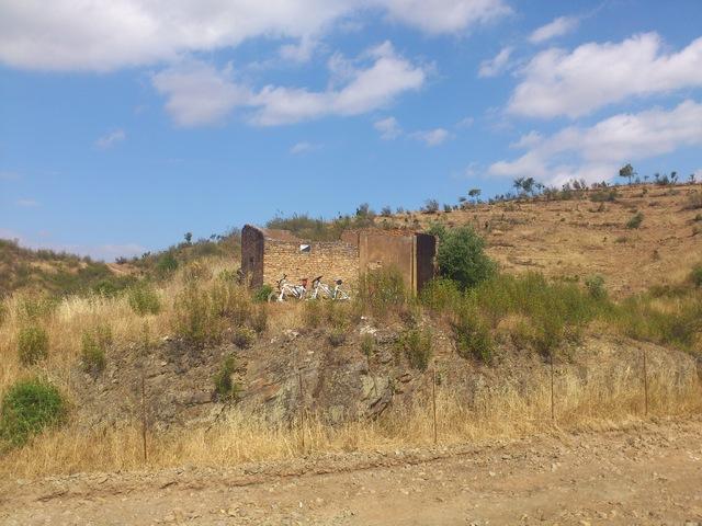 06/06/2013. Huelva - Puente del Alcolea. DSC_0642