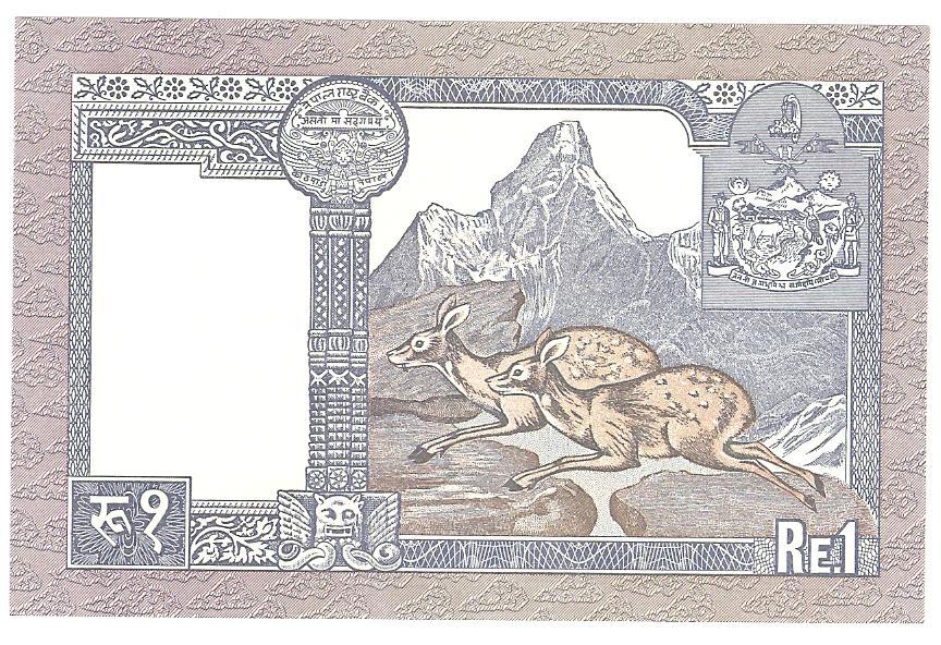 1 rupia de Nepal año ?¿  Image