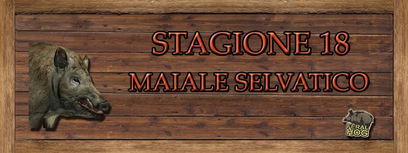 Maiale Selvatico - ST. 18 MAIALE_SELVATICO