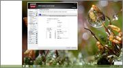 PC Problem Windows 8.1 Pro N Probleme // Grafikkarte // Auflösung Screenshot_2015_07_06_06_24_25