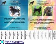 Социальная реклама 74c6a411d54ct