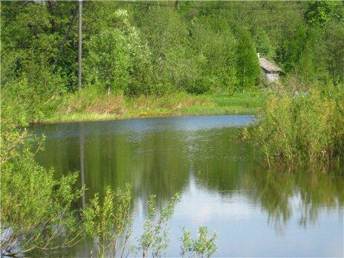 Весна, лето, осень - природа C79fc636c856