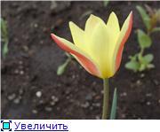 Изучаем основы Фотошопа - Страница 3 5853fe028571t