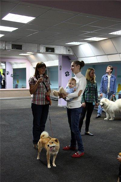 """ПРИГЛАШЕНИЕ НА ОТКРЫТИЕ Центра Спорта, Развлечений и Красоты для Собак   """"DOG AVENUE""""!!! - Страница 2 4af6cb7935da"""