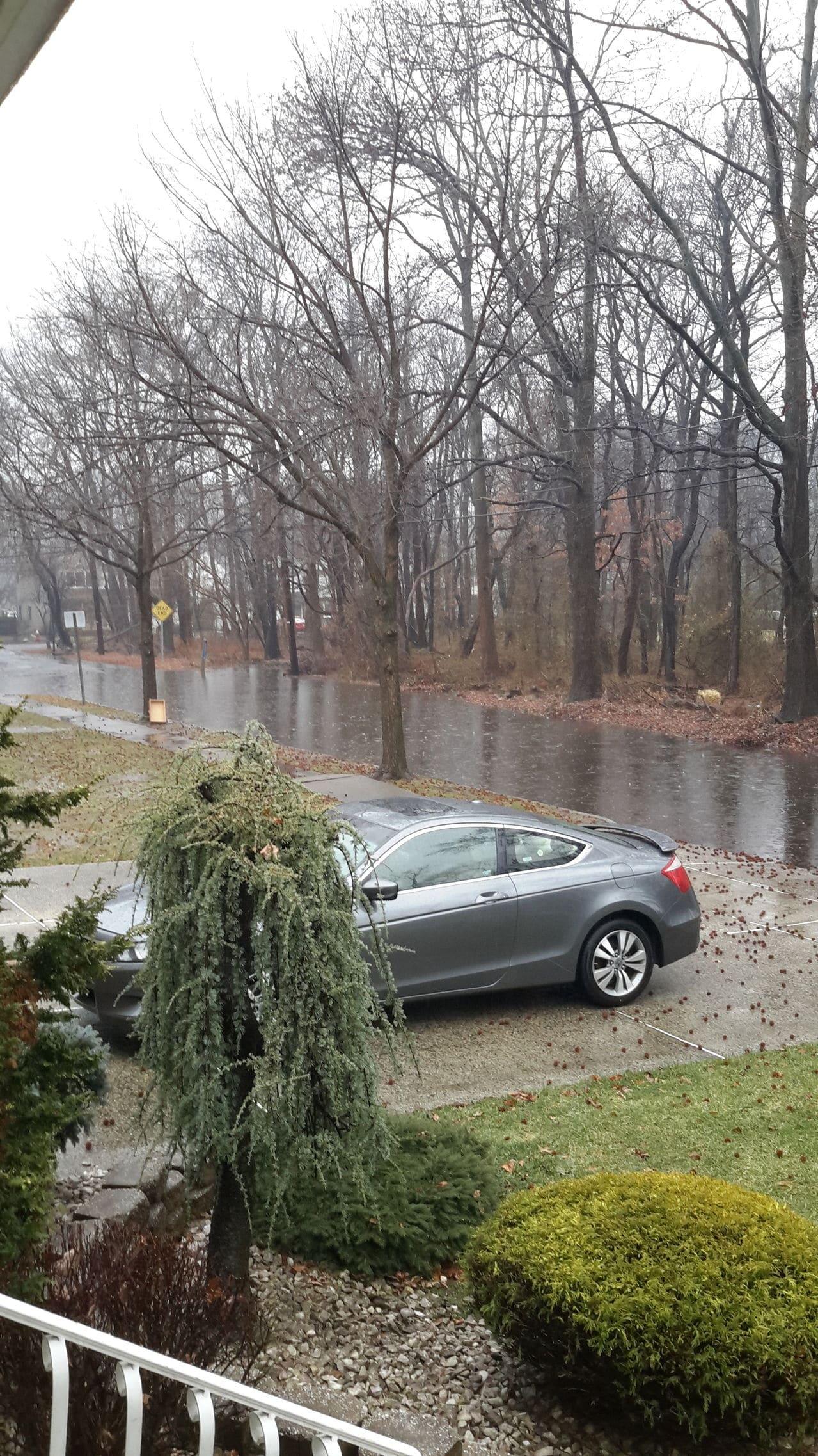 Sunday, January 18th Rain Storm - Page 4 20150118_135312