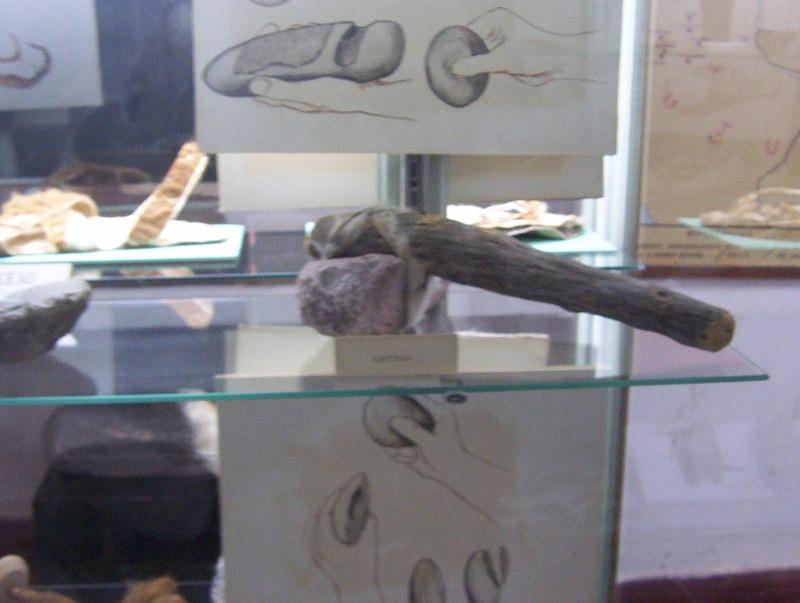 Algunos de mis dibujos arqueológicos Arqueologia_22