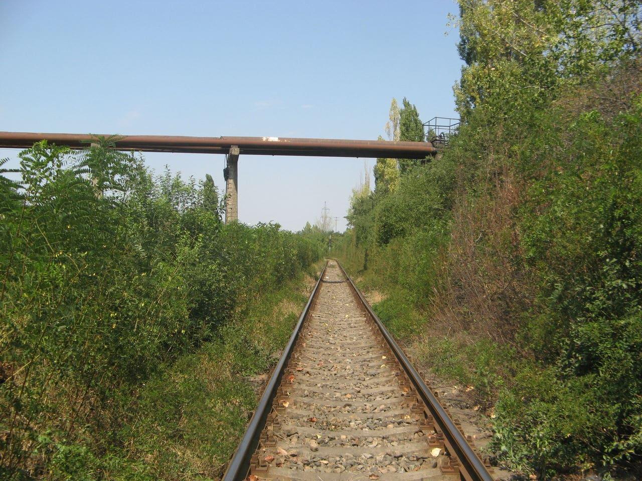 Calea ferată directă Oradea Vest - Episcopia Bihor IMG_0049