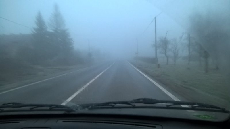 preživjeli smo bjelovarsku zimsku noć... 12494009_10206588655009234_7802681689293387602_o