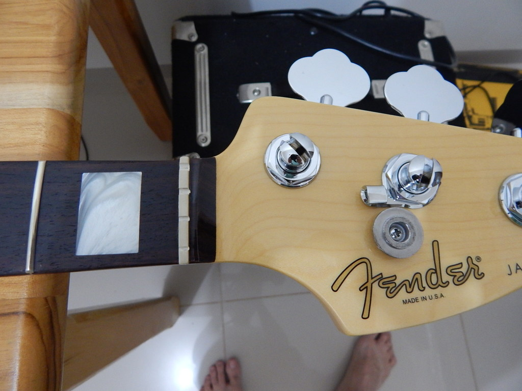 Montando o Jazz Bass dos sonhos - Página 2 DSCN1017_1