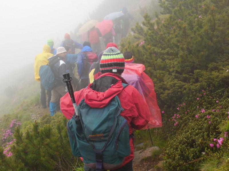 Planinari i alpinisti - Page 13 DSCN1809