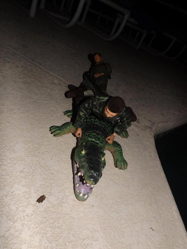Joe and Hank...On a mission! - Page 2 DSCF8357_zpsb19ca654