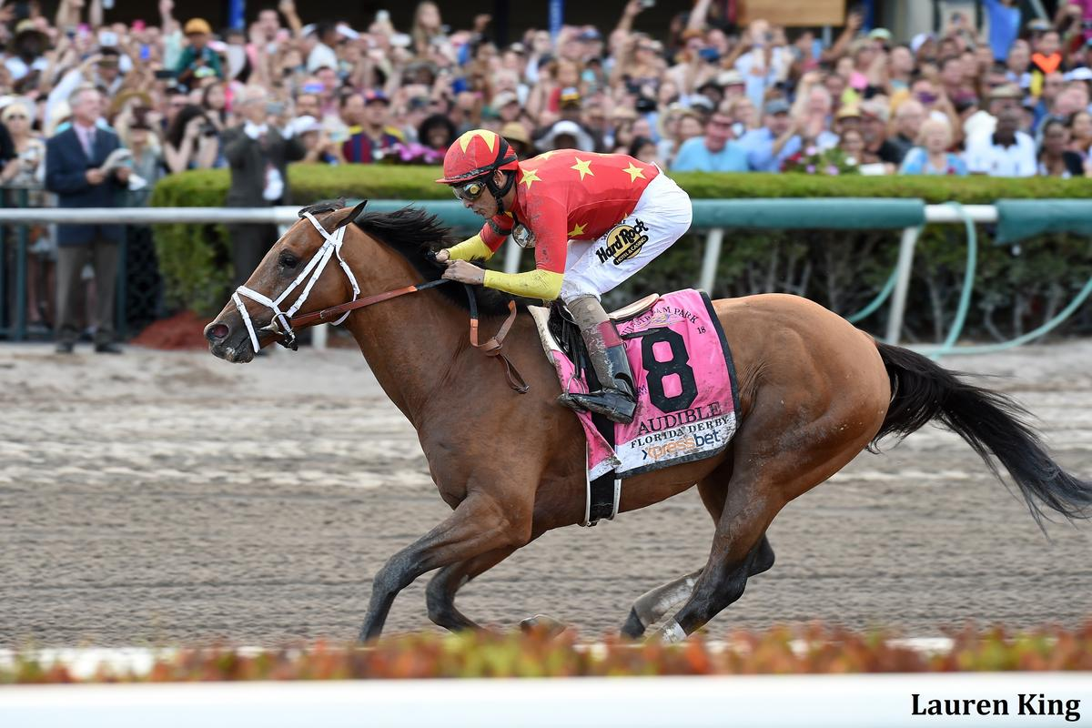 Audible Asegura Su Viaje A Churchill Downs Con Soberbio Triunfo En El Florida Derby Audible_Fl_Derby-_ESP