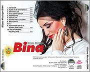 Bina Mecinger - Diskografija 2014_z