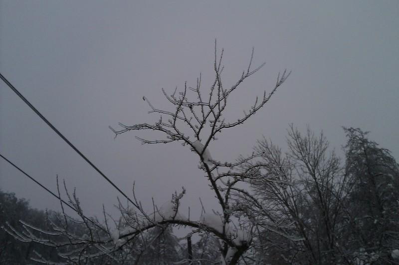 Izrada ogrijevnog drva IMAG0679