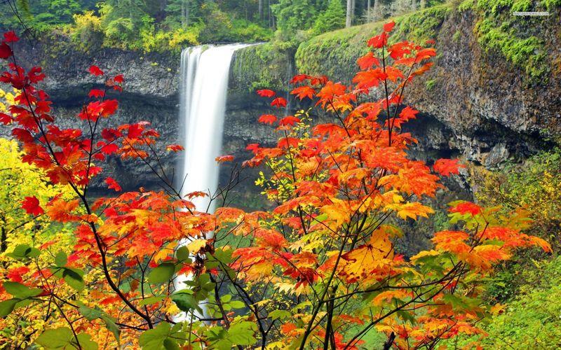 Fotografija dana - Page 5 Waterfall_near_the_autumn_forest_6457_1920x1200