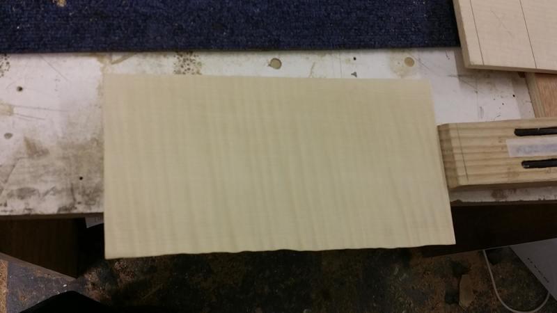 Construção caseira (amadora)- Bass Single cut 5 strings - Página 4 11996382_10153636618254874_885828754_o