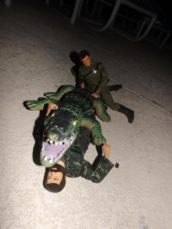 Joe and Hank...On a mission! - Page 2 DSCF8362_zps8e976961