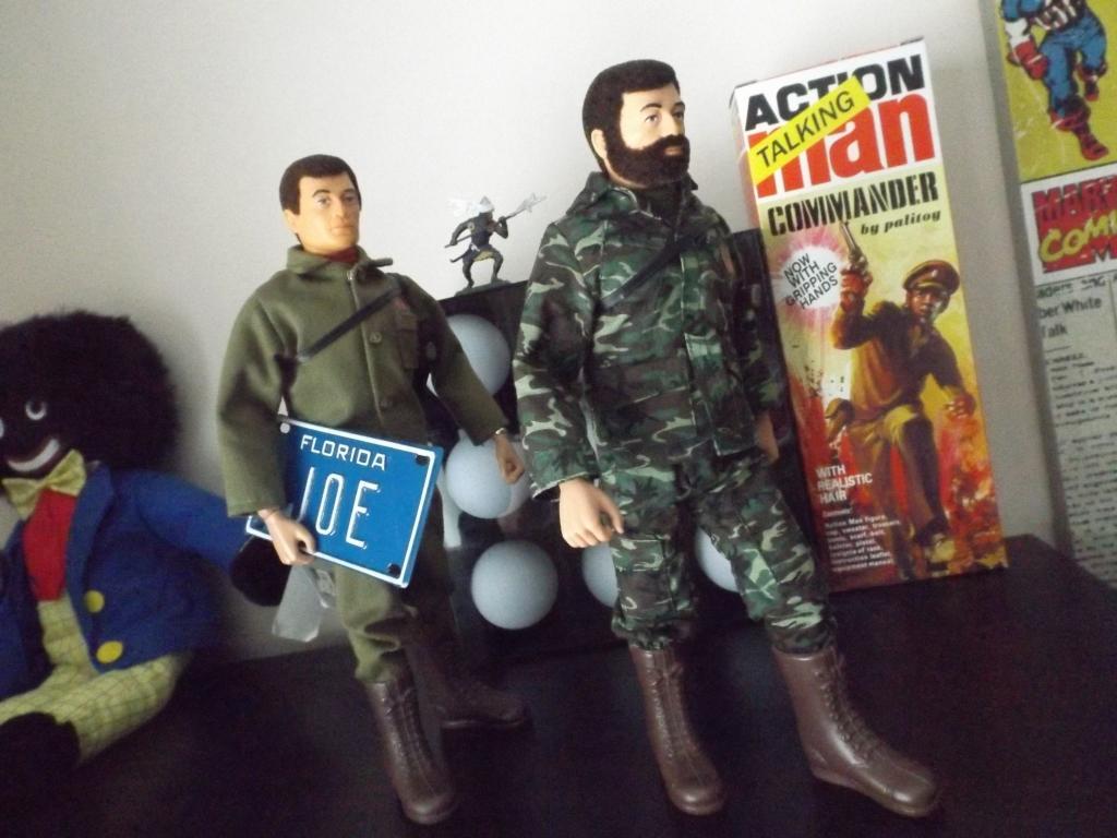 Joe and Hank...On a mission! - Page 2 DSCF8454_zps261e20a3