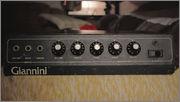 """Amplificador BAG7 U75G - Ressuscitando o """"bagão"""" da Giannini dos anos 70 MG_8659_C_pia"""