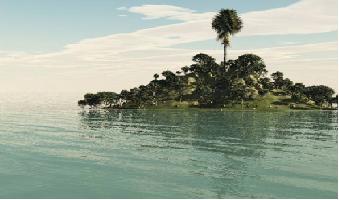 Aquarismo: Como as regras basicas de fotografia podem nos ajudar??? Sem_t_tulo22