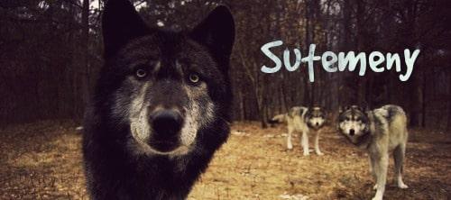 Sutemeny, a new wolf role play! Original