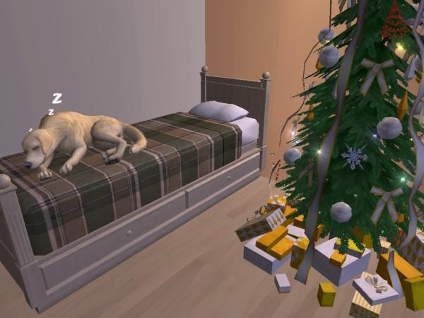 Fotky z hraní TS2 Christmas_Lane_86
