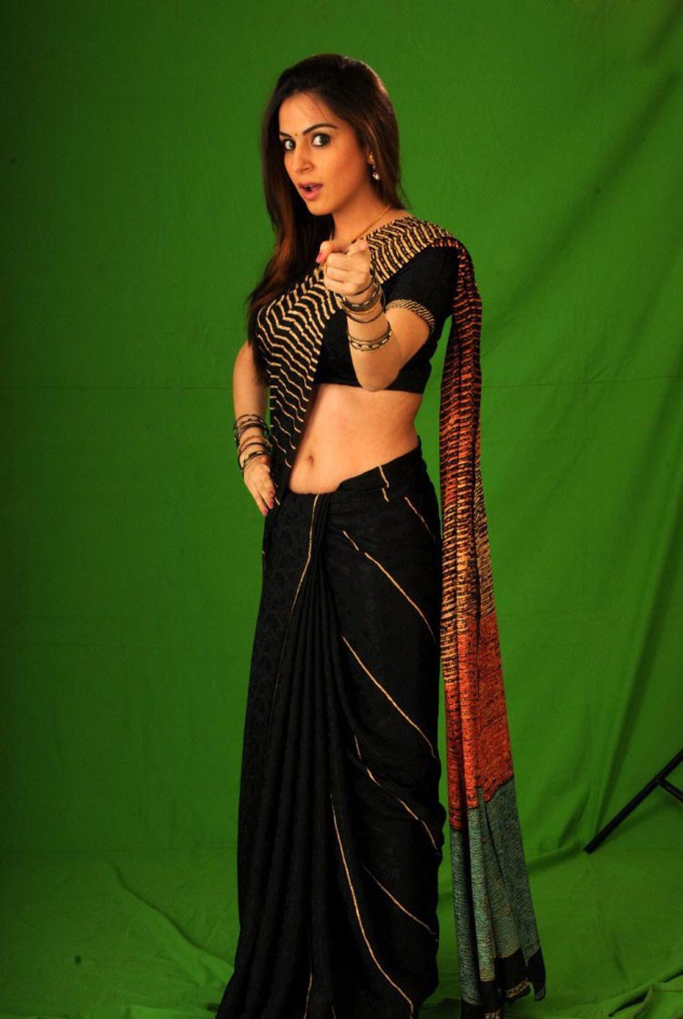 Shraddha Arya / შრადდჰა არია - Page 4 Shraddha_arya_hot_in_saree_stills_2