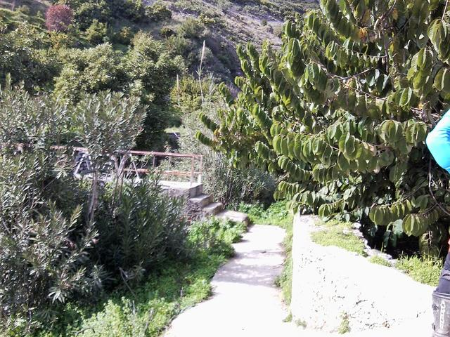 Lanjaron trail extremo (cronica y fotos) Foto4109
