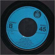 Borislav Bora Drljaca - Diskografija R_4148519_1356895213_3641
