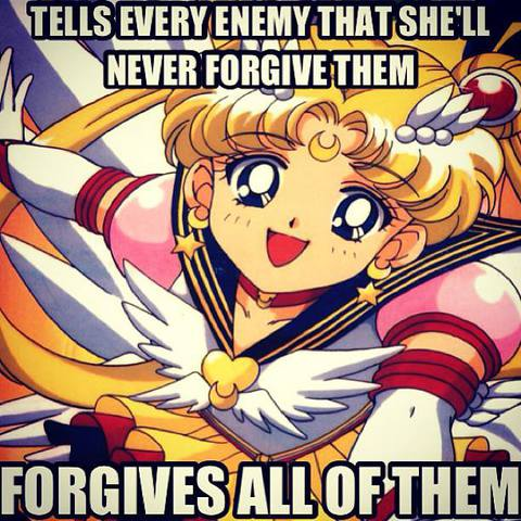 Sailor Moon Memes 1185459_10201778594647424_1547539041_n