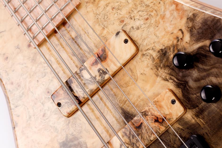 Luthier Erasmo Lousada  121