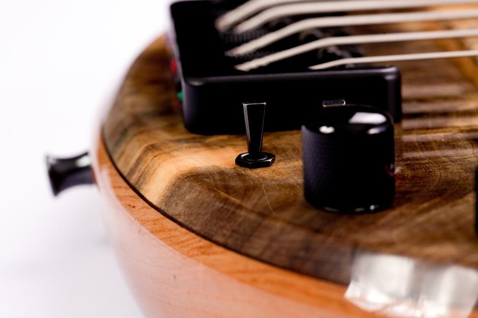 Luthier Erasmo Lousada  116