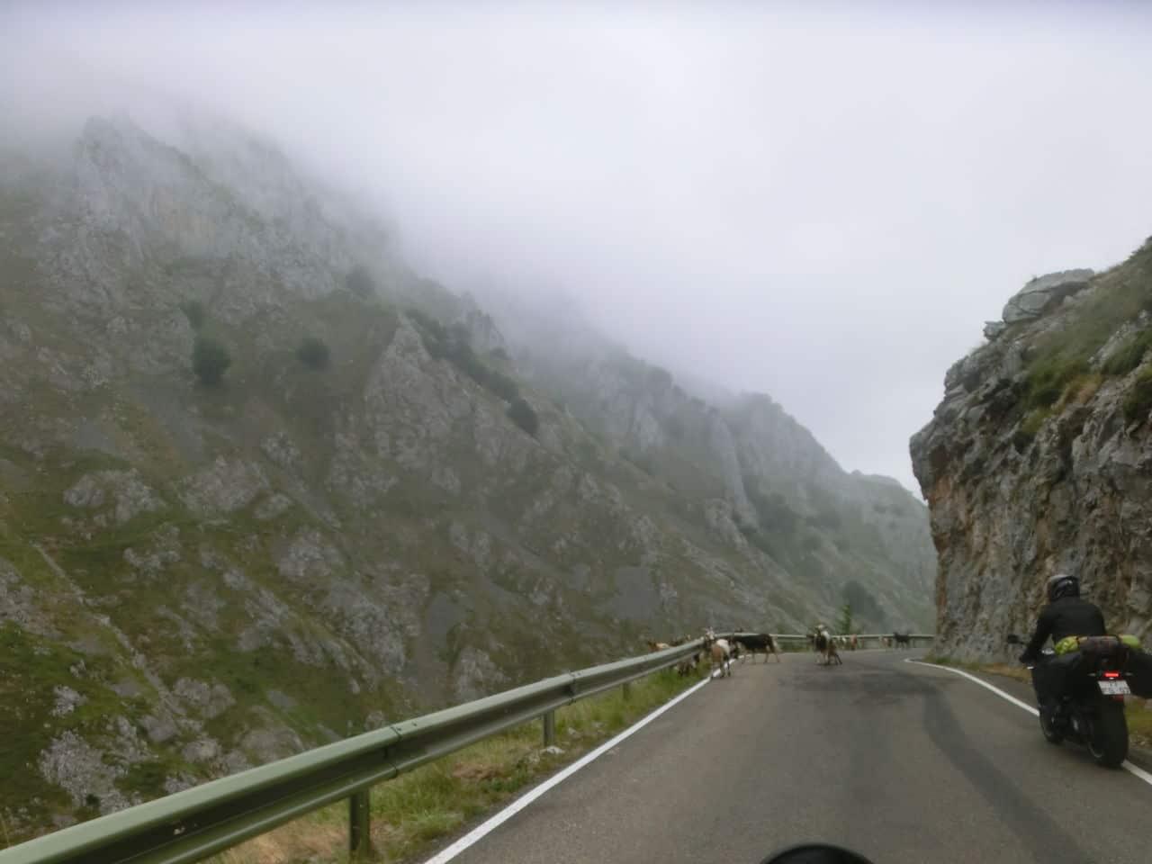 Summer roadtrip 2015 - Picos da Europa - Página 2 CIMG6404