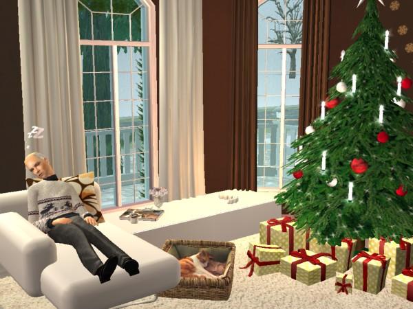 Fotky z hraní TS2 Christmas_Lane_87