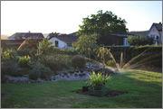 Léto na zahradě - Stránka 2 DSC_0003