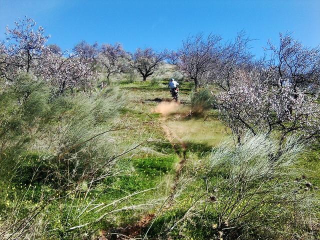 Desafio Norte (trail extremo) cromica y fotos - Página 2 Foto3944