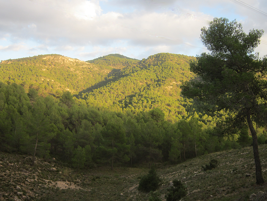 EL RECONCO,Biar + COVA NEGRA (ruta motosenderista) Biar36
