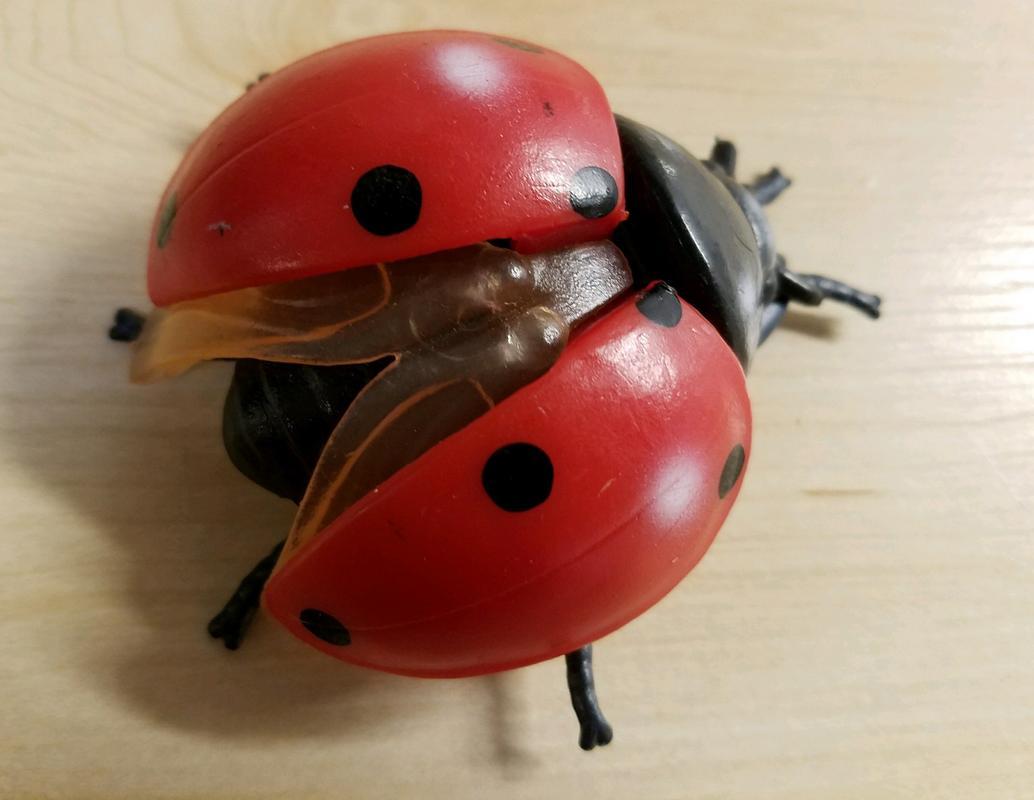Lady Bug(s) (Bullyland) 20180215_195432