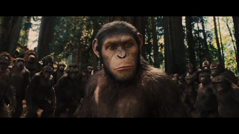 El origen del planeta de los simios (2011) [Ver + Descargar] [HD] [Castellano] [GD + OL] El_origen_simios_3