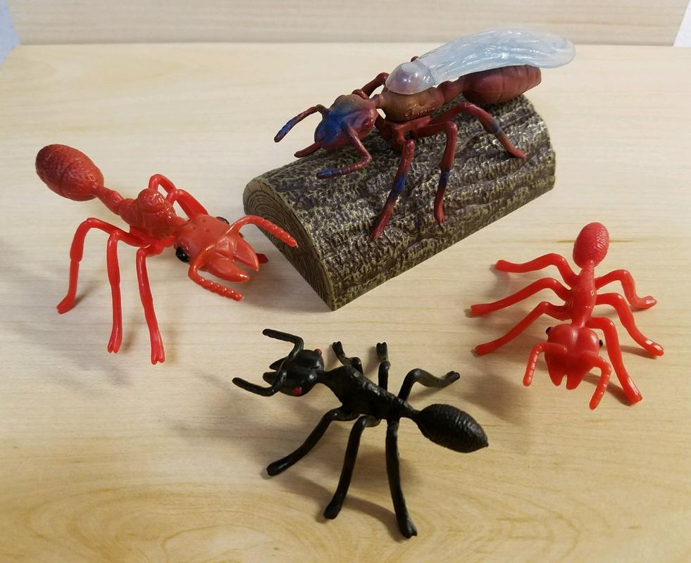 Ant, male (Bullyland) 20180219_155701