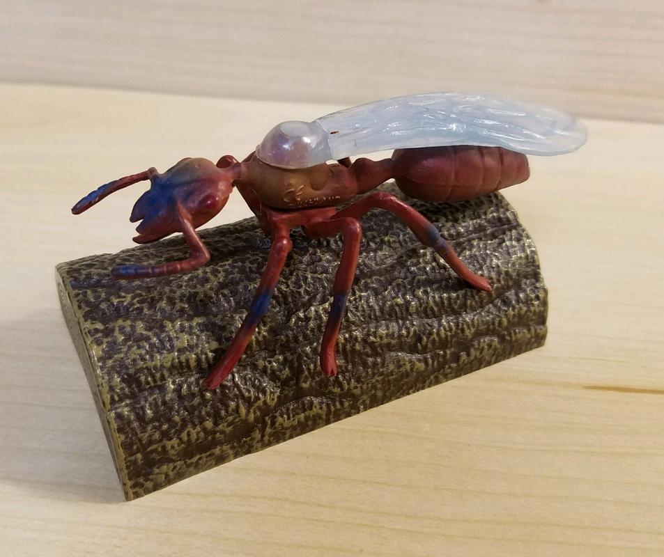 Ant, male (Bullyland) 20180219_155545