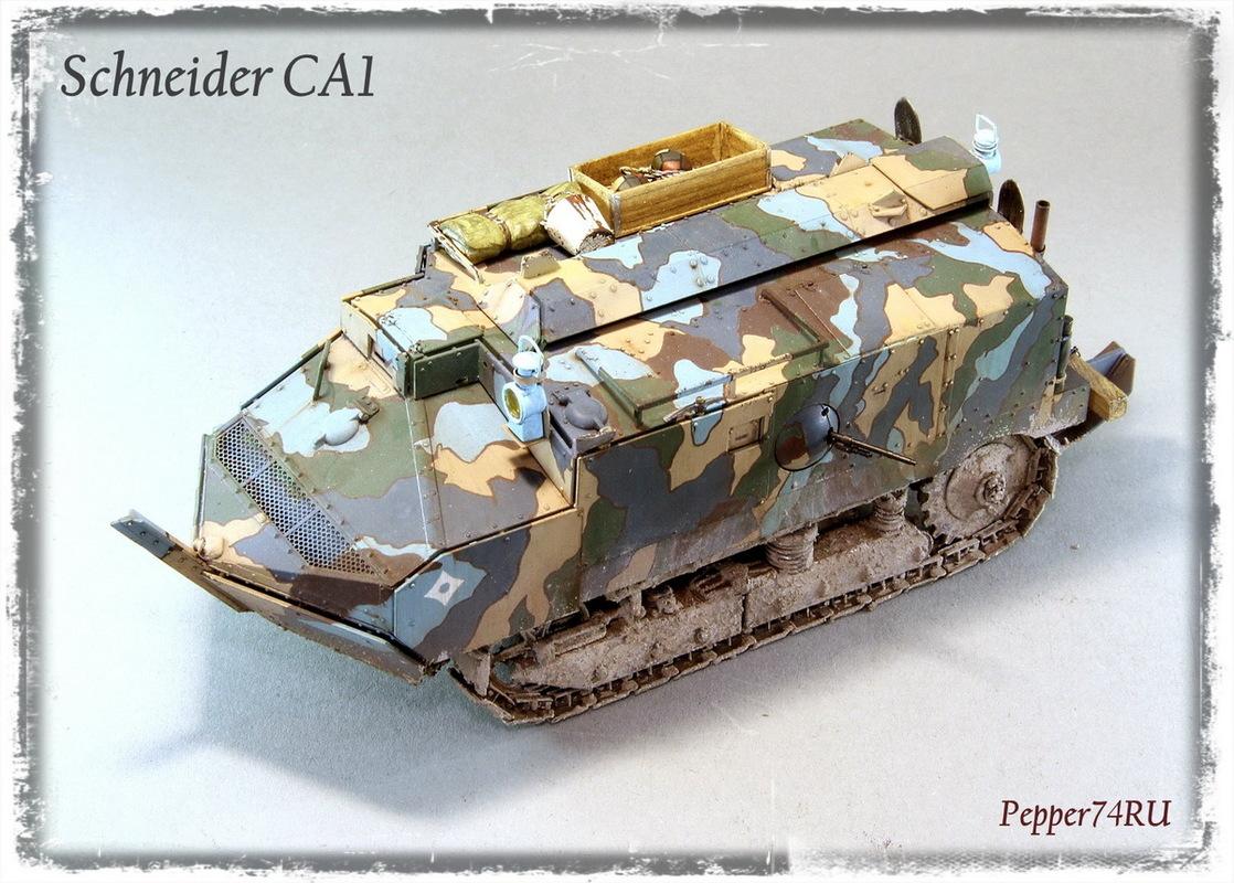 Schneider CA1 Schneider_ca1_0010